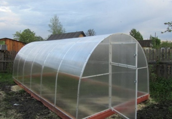 теплица шир 5 м для бассейна прямостенная